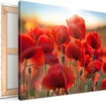 canvas photo product