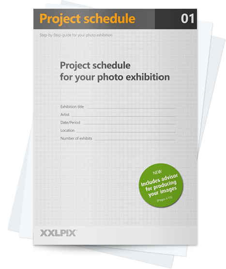 project-schedule-exhibition-header